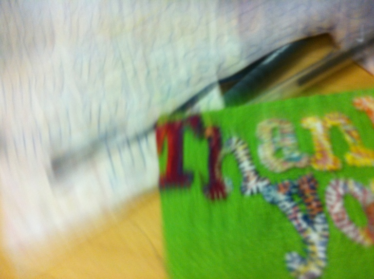 Bright Green Oyster Wallet Hand stitched with hand cut embellished applique letters/font